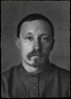 Подвойский Николай Ильич
